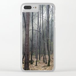 Magical winter light Clear iPhone Case