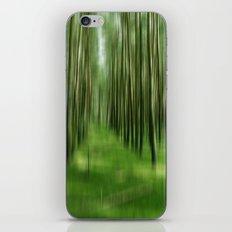 Rügenwald no.1 iPhone & iPod Skin