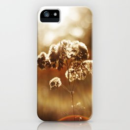 Autumnal Glow iPhone Case