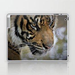 Determined Tiger Laptop & iPad Skin