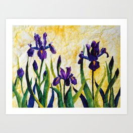 Watercolor Wild Iris on Wrinkled Paper Art Print