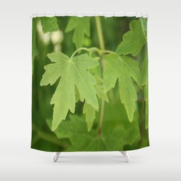Amber Orientalis Leaves Shower Curtain