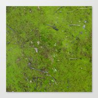 moss Canvas Prints featuring Moss by aeolia