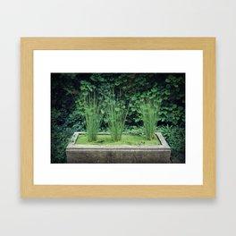 Water Grass Framed Art Print