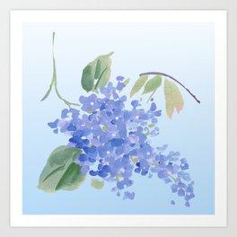 blue lilac Art Print