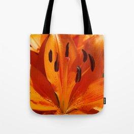 Tangerine Dreams Tote Bag