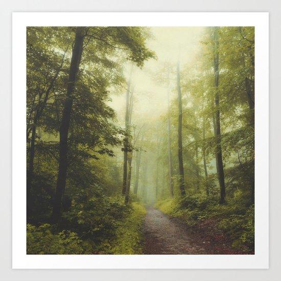 Long Forest Walk Art Print
