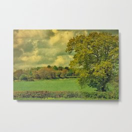 Over The Field Metal Print