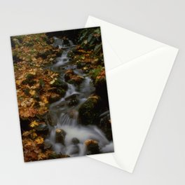 Forest Creek Amongst The Leaves Stationery Cards