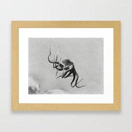 Ninja Octopus Framed Art Print