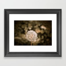 I Want to Fly Framed Art Print