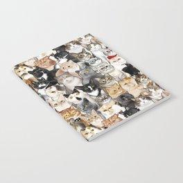 Catmina 2017 - THREE Notebook