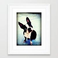 boston Framed Art Prints featuring Boston by C Liza B