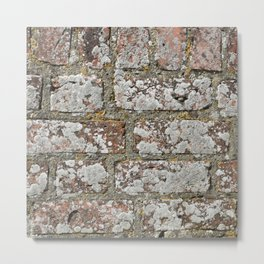 old wall bricks Metal Print
