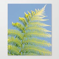fern Canvas Prints featuring Fern by Pati Designs