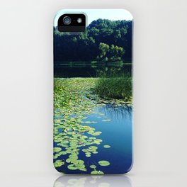 Ballad of the Bullfrog iPhone Case