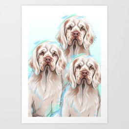 Clumber Spaniel Dogs Art Print