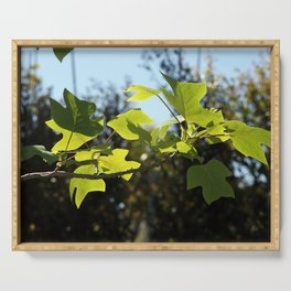 Fig tree branch Serving Tray