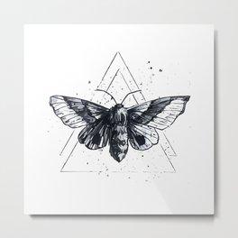 Moth Metal Print