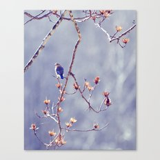 A Bluebird for Isabelle Canvas Print