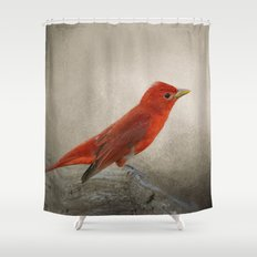 Song of the Summer Tanager 2 - Birds Shower Curtain
