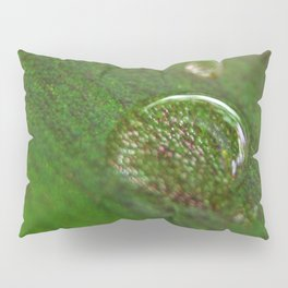 Nature's Magnifying Glass Pillow Sham