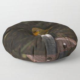 Resting Robin Floor Pillow