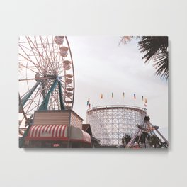 Family Kingdom Metal Print