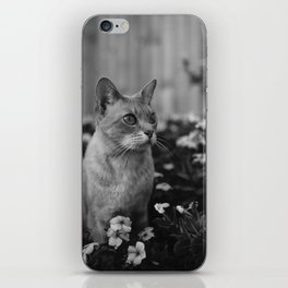 cats and flowers iPhone Skin