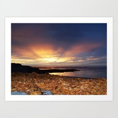 Seaweed Beach Sunset Art Print