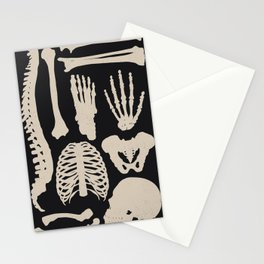 Osteology Stationery Cards