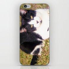 BatCat iPhone & iPod Skin