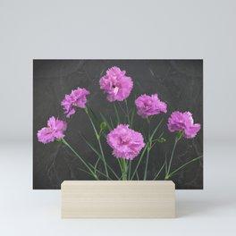 Pinks on Slate Mini Art Print