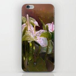 Anthuriums iPhone Skin