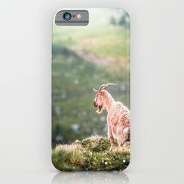 Greenland Goat on mossy hills iPhone Case