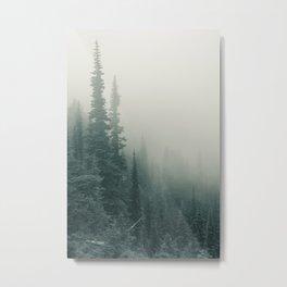 Fog Mist Misty Forest Ombre Island Northwest Washington Oregon Nature Outdoors Metal Print