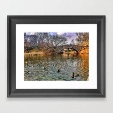 Bridge and ducks Framed Art Print