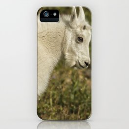 Innocence and Beauty in a Young Mountain Goat iPhone Case