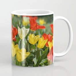 Lewes Tulips Festival Coffee Mug