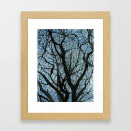 BETWEEN BRANCHES Framed Art Print