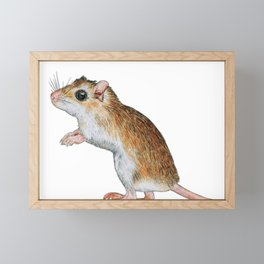 Little Mouse Friend Framed Mini Art Print