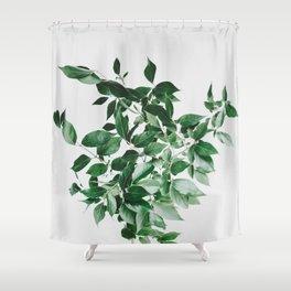 Minimal Green Plant Arrangement Shower Curtain
