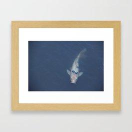 Japanese Koi Fish Framed Art Print