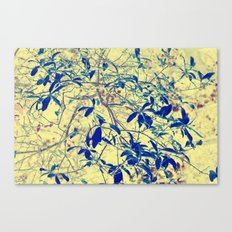 Leaves they're a changing II Canvas Print