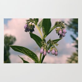 Healing Comfrey Plant with Flowers Rug