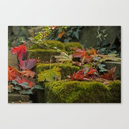 Autumnlights- Indian Summer IV Canvas Print