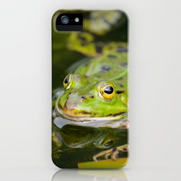 Green European Frog iPhone Case