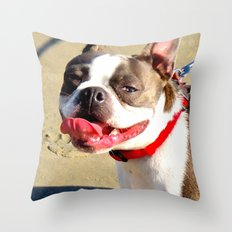 Portrait of a Boston Terrier Throw Pillow