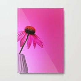 Ecinacea Pink Metal Print