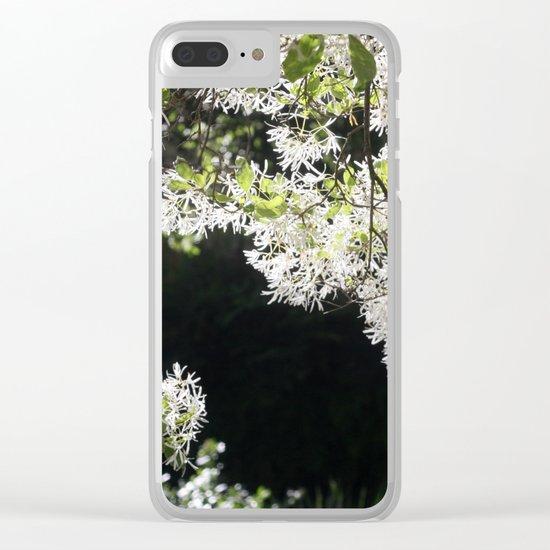 Spring fiesta Clear iPhone Case